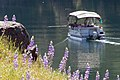 Englebright Lake (6218417148).jpg