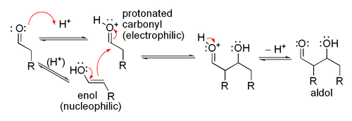 Mechanism for acid-catalyzed aldol reaction of an aldehyde with itself