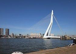Erasmusbrug across the Nieuwe Maas river