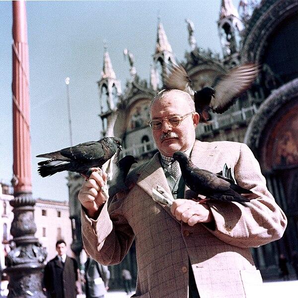 File:Ernest Hemingway with pigeons, Venice, 1954.jpg
