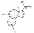 Esferoano - Numeración.png