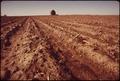 FARM TYPICAL OF EASTERN NEBRASKAN PLAINS - NARA - 547303.tif