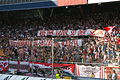 FC Red Bull Salzburg gegen SK Rapid Wien (19. 7. 2014) 45.JPG