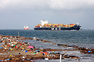 FEMA - 38732 - Cargo ships wait off shore for the port to open in Texas.jpg
