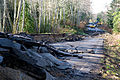 FEMA - 40122 - Flood damaged road in Washington.jpg
