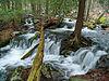 Fall Creek Hike (1).jpg