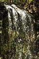 Falling Waters State Park 3.jpg