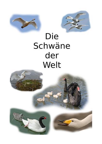 File:Familie Höckerschwan 4 - Arten der Schwäne.pdf