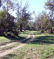 Farm Path, San Timoteo Canyon, Redlands, CA 1-2012 (6727029795).jpg