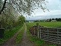 Farm Track - geograph.org.uk - 171240.jpg