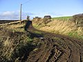 Farm track - geograph.org.uk - 301558.jpg