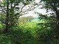 Farm track - geograph.org.uk - 803592.jpg