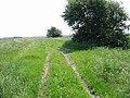 Farm track between the fields - geograph.org.uk - 458098.jpg
