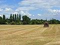 Farmland, Bisham - geograph.org.uk - 856470.jpg