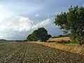Farmland, Welford - geograph.org.uk - 927943.jpg