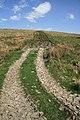 Farmland track - geograph.org.uk - 799527.jpg