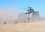 Fast roping training exercise 150306-N-BS486-670.jpg