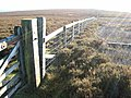 Fence on Collier Law - geograph.org.uk - 297628.jpg
