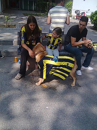 Fan (person) - Fenerbahçe S.K. club fan mother with child and pet