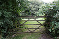 Field behind gate and hedge Goodnestone Dover Kent England.jpg