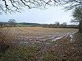 Field near Staple Fitzpaine - geograph.org.uk - 1617202.jpg