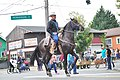 Fiestas Patrias Parade, South Park, Seattle, 2017 - 284 - horses.jpg