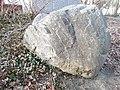 Findling Nr. 142 - Biotitgneis, mit Granat (Findlingspfad Cottbus - Schmellwitz).jpg
