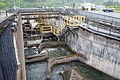 Fish Ladder, Bonneville Dam-1.jpg