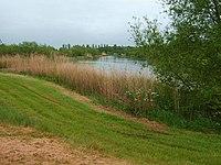 Fisherwick Lakes - geograph.org.uk - 428962.jpg
