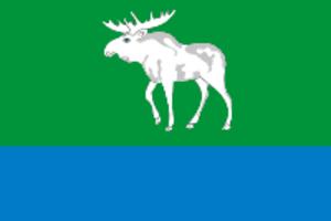 Fyodorovsky District, Republic of Bashkortostan - Image: Flag of Fedorovsky rayon (Bashkortostan)