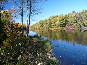 Flambeau River - Flambeau River in the Flambeau River State Forest