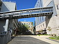 Flickr - Technion - Israel Istitute of Technology - IMG 1004.jpg