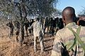 Flintlock 2017 training in Niger 170228-A-UW671-029.jpg