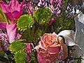 Flowers (4585531205).jpg