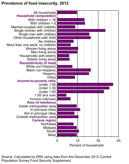 Food Insecurity by Household