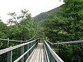 Footbridge over River Nevis - geograph.org.uk - 856380.jpg
