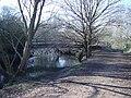Footbridge over the River Blackwater - geograph.org.uk - 691482.jpg
