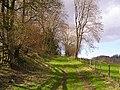 Footpath, Stowfield - geograph.org.uk - 356737.jpg