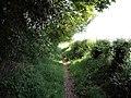 Footpath into Wybunbury - geograph.org.uk - 423421.jpg