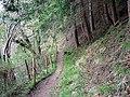 Footpath through Parson's Park - geograph.org.uk - 1274941.jpg