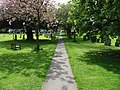 Footpath through the churchyard - geograph.org.uk - 793534.jpg