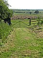 Footpath to Bury Court - geograph.org.uk - 1335404.jpg