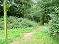 Footpath to the Wye - geograph.org.uk - 1449974.jpg