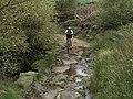Fording a moorland stream - geograph.org.uk - 961280.jpg