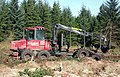 Forestry Equipment - geograph.org.uk - 577068.jpg