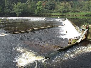 Halton-with-Aughton - Forge Bank weir