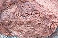 Fossil Rocks.jpg