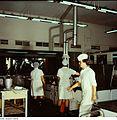 Fotothek df n-21 0000097 Wirtschaftspfleger.jpg