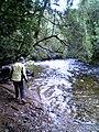 Franklin River Tasmania.jpg