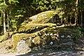 Froschstein bei Schlag (Litschau) NÖ-Naturdenkmal GD-064.jpg